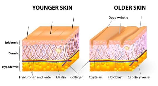 Treatments to reduce the appearance of fine lines and wrinkles